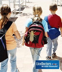 Fairfield County School Lice Policy