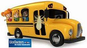 Charlotte School Lice Policy