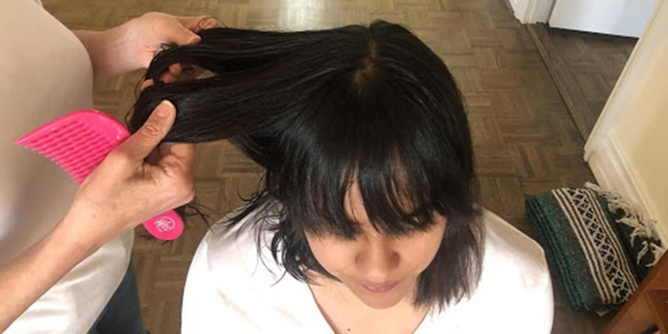 lice treatment dry hair remove nit picking