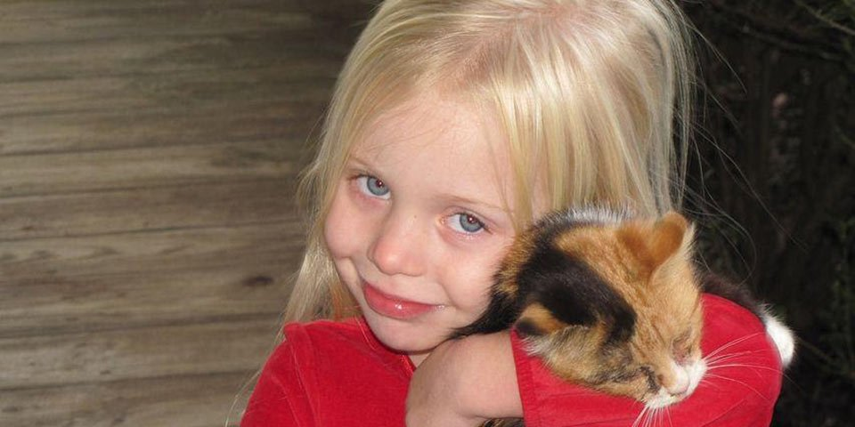 denton pets dog cat puppy kitten kitty cannot get human lice transmit carry