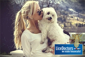 Woman with dog - LiceDoctors