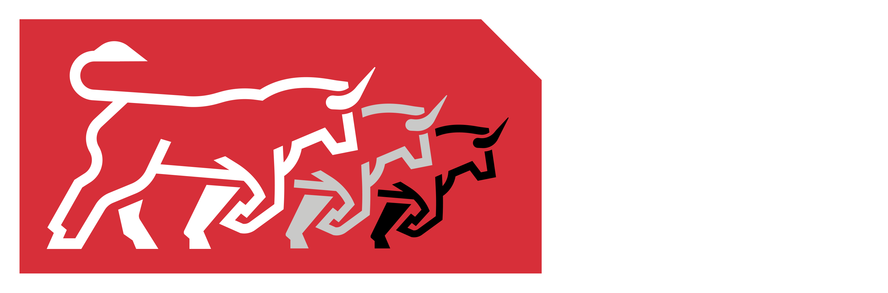 The Bulls Run Group Logo