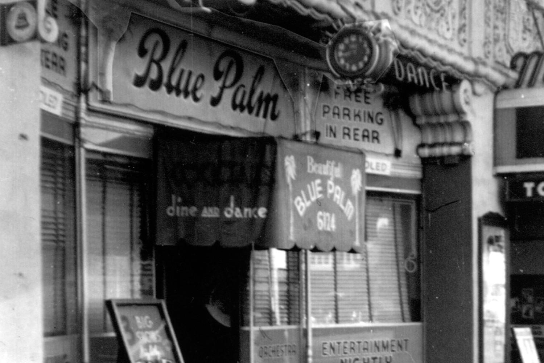 Vintage Blue Palm photo