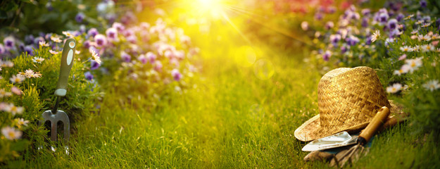Easy Ways to Enjoy Gardening in an Assisted Living Community