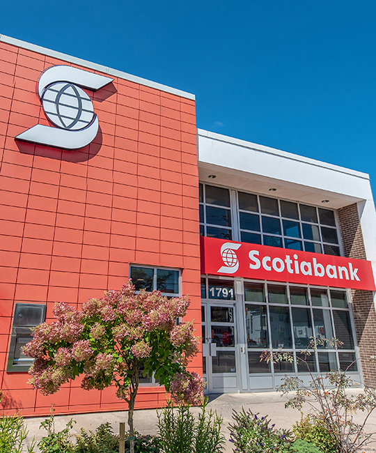 Brick exterior of a Scotiabank branch with big windows and flowers in foreground