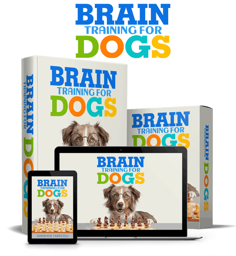 Brain Training for dogs at scruffythedog.com