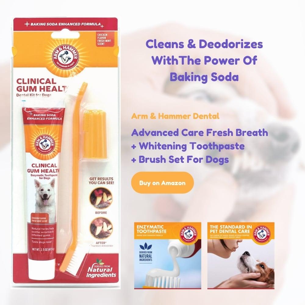 Arm & Hammer Dental Toothbrush kit for dogs