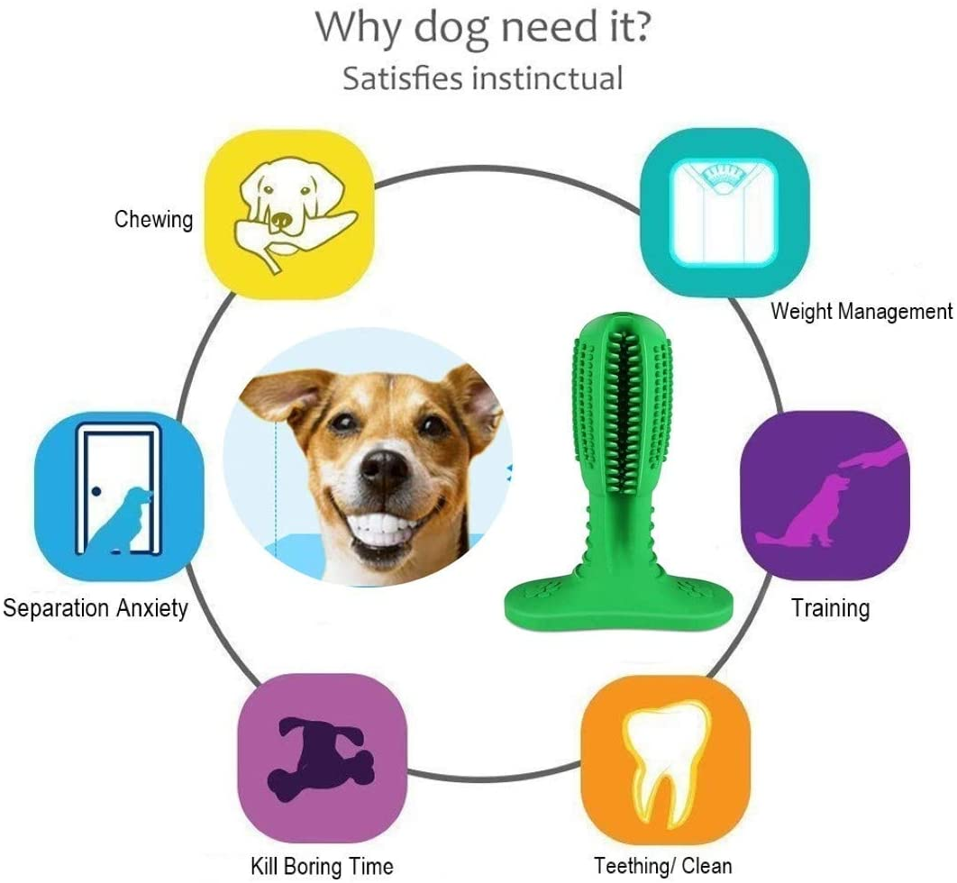 Zadyx stick toothbrush for dogs at scruffythedog.com