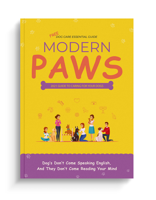 Modern Paws a FREE Ebook for Modern Dog Parents at www.scruffythedog.com