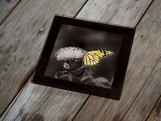 Glass Coaster Photo