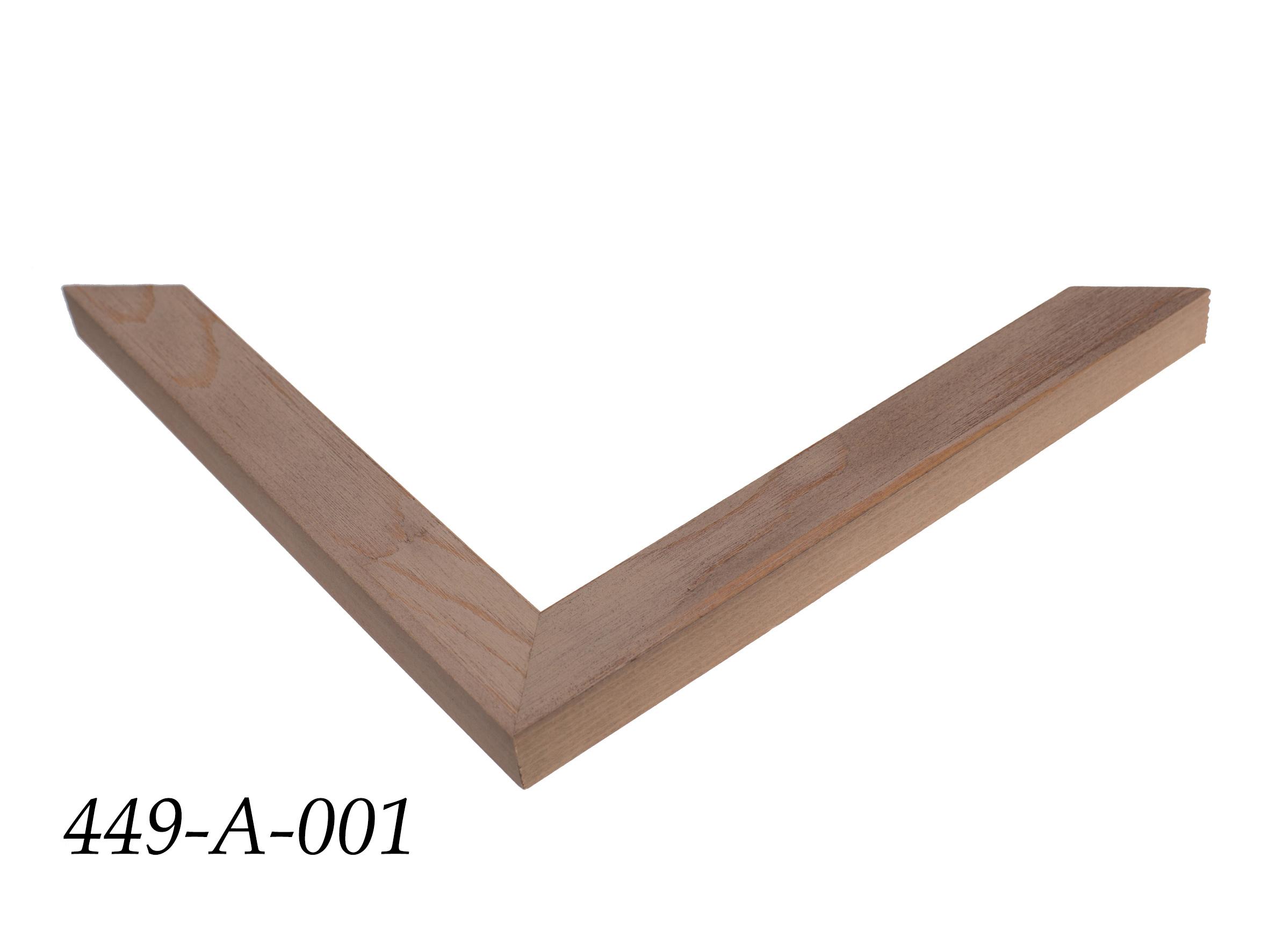 449-A-001
