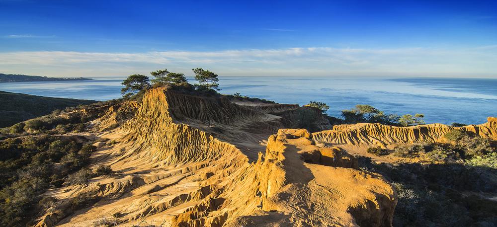 Torrey Pines State Natural Reserve San Diego, CA
