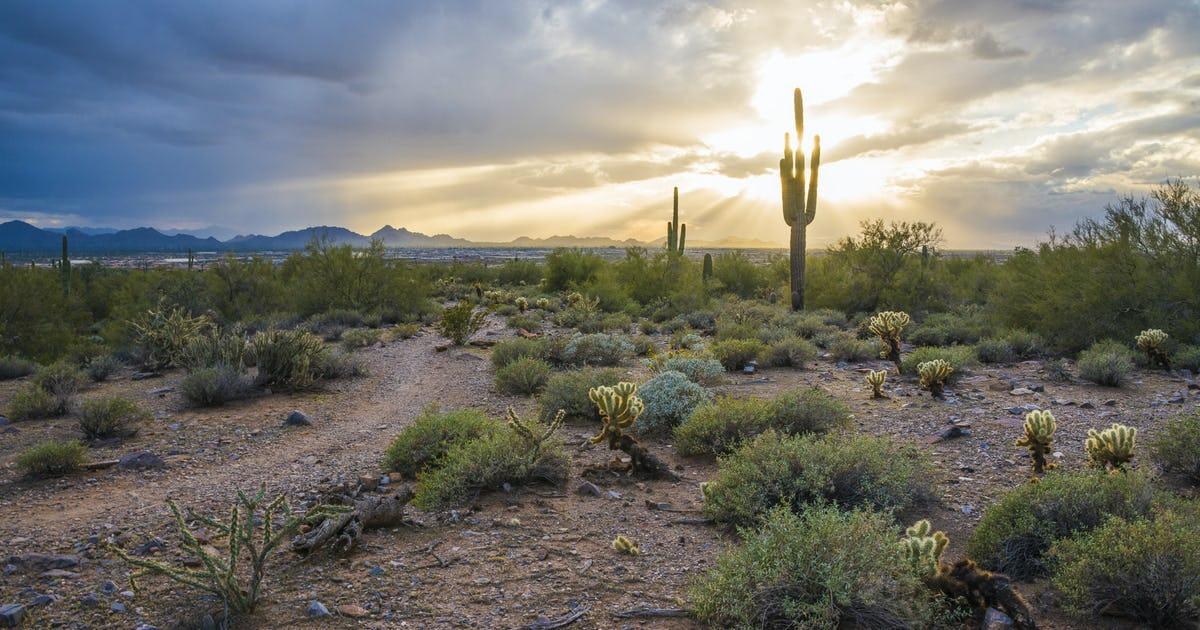 Gateway Loop Trail Scottsdale, AZ