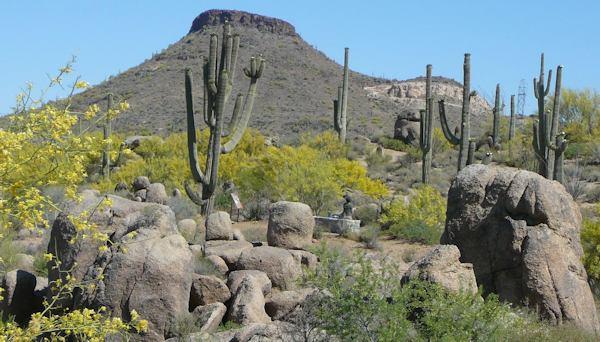 Jane Rau Interpretive Trail Scottsdale, AZ