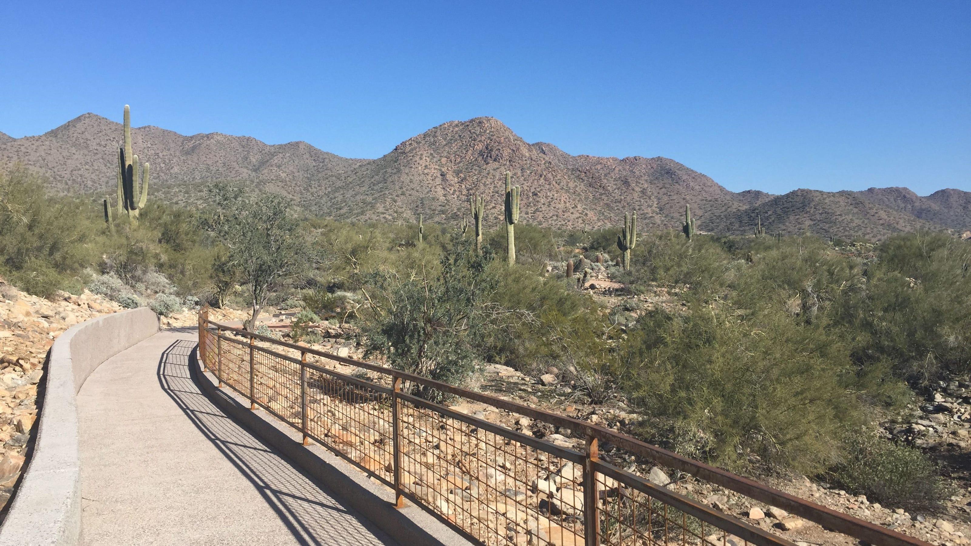 Kovach Family Nature Trail Scottsdale, AZ
