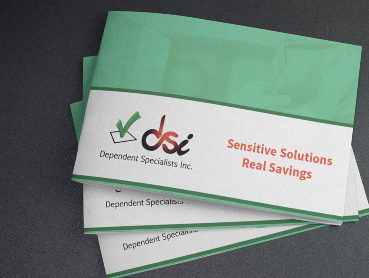 DSI Corporate Brochure