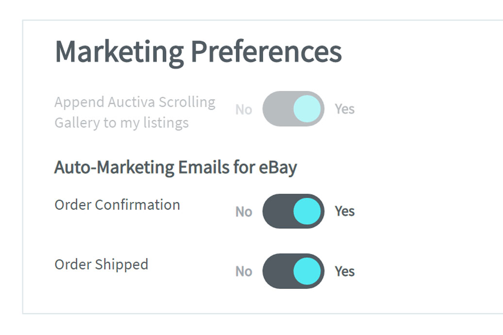 Auctiva eBay email marketing settings
