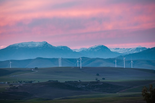 A photo of land with wind turbines on it.