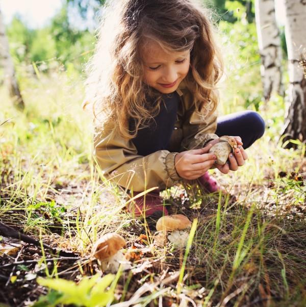 a girl picking up mushrooms