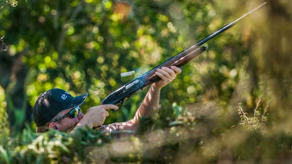camouflaged dove hunters shooting