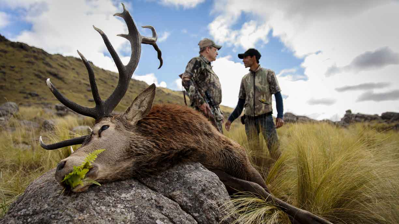 Big Game Hunting in Argentina - Sierra Brava Lodge