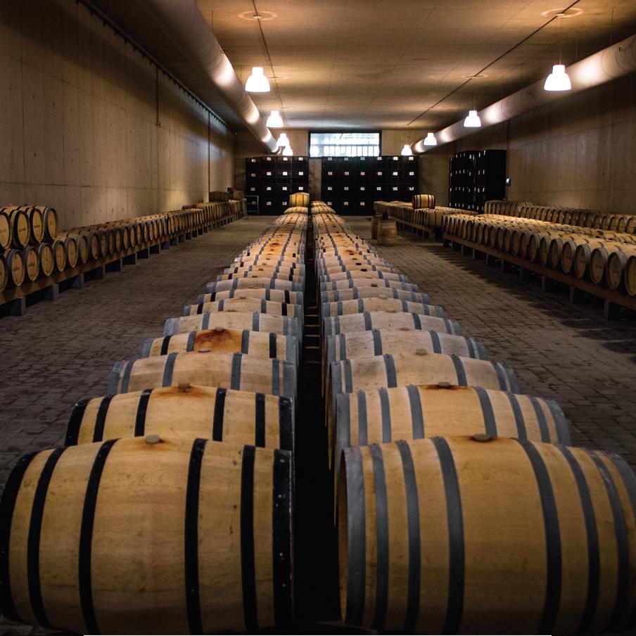 Adega Mayor vineyard Portuguese wine cellar