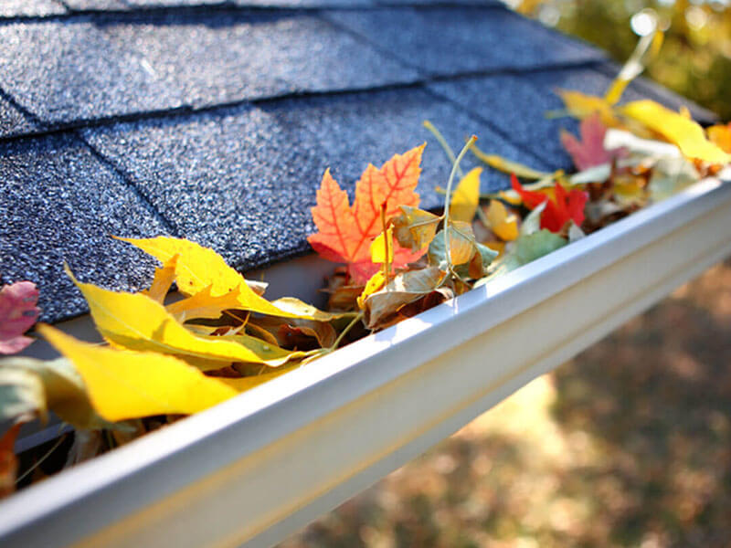 Gutters clogged with fall leaves