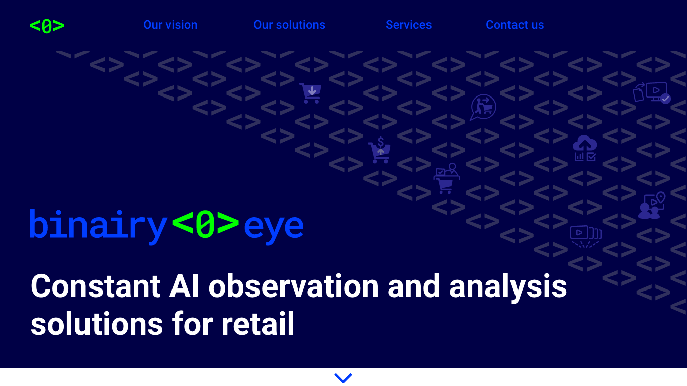 Binairy Eye website hero section