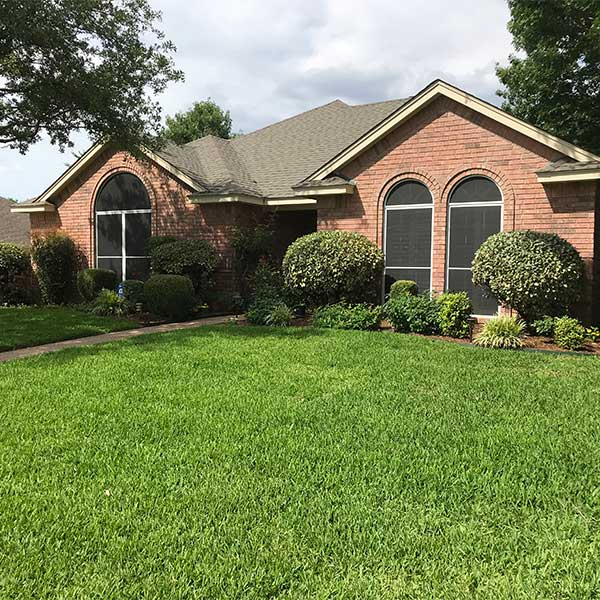 Lush lawn by Higher Ground Lawn Care and Lighting