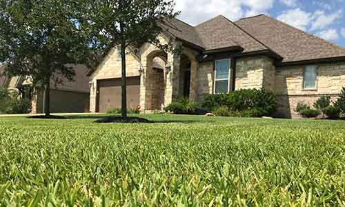 Homeowners in College Station, TX with a lush lawn that has benefited from fertilization services.