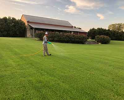 This lawn in Bryan, TX gets routine weed control treatments.