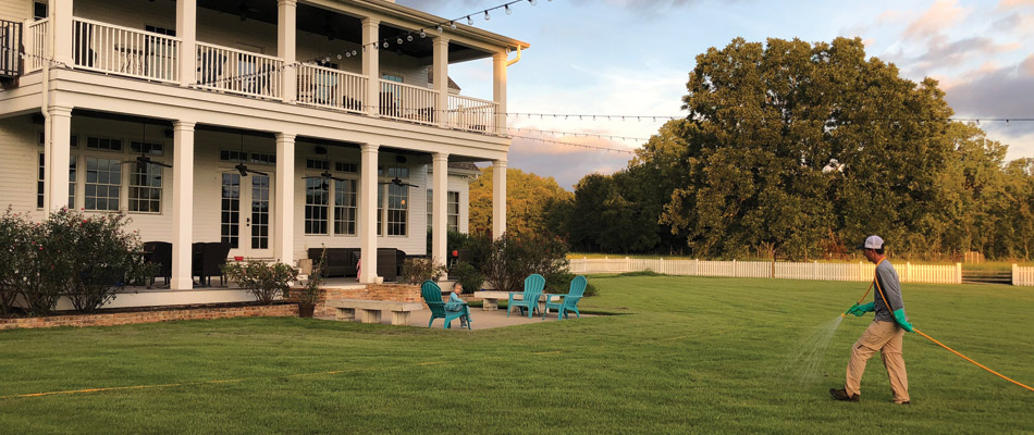Caring for a lawn with regular treatments in Bryan, TX.