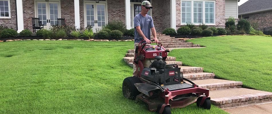 A recently mowed lawn in College Station, TX.