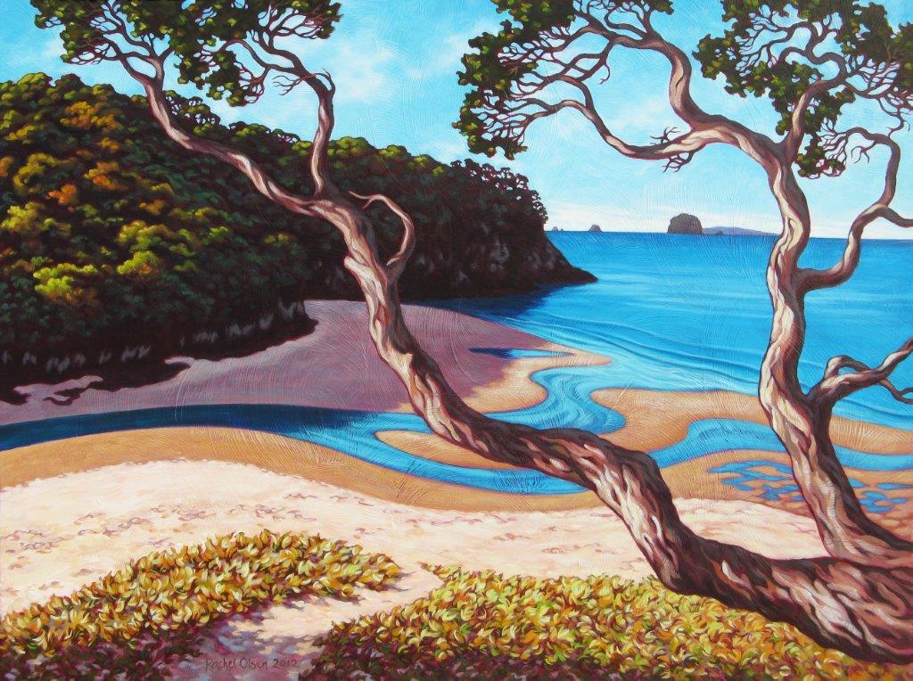 Cooks Beach Estuary