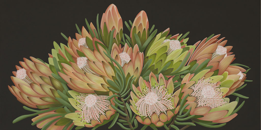 The Protea Patch