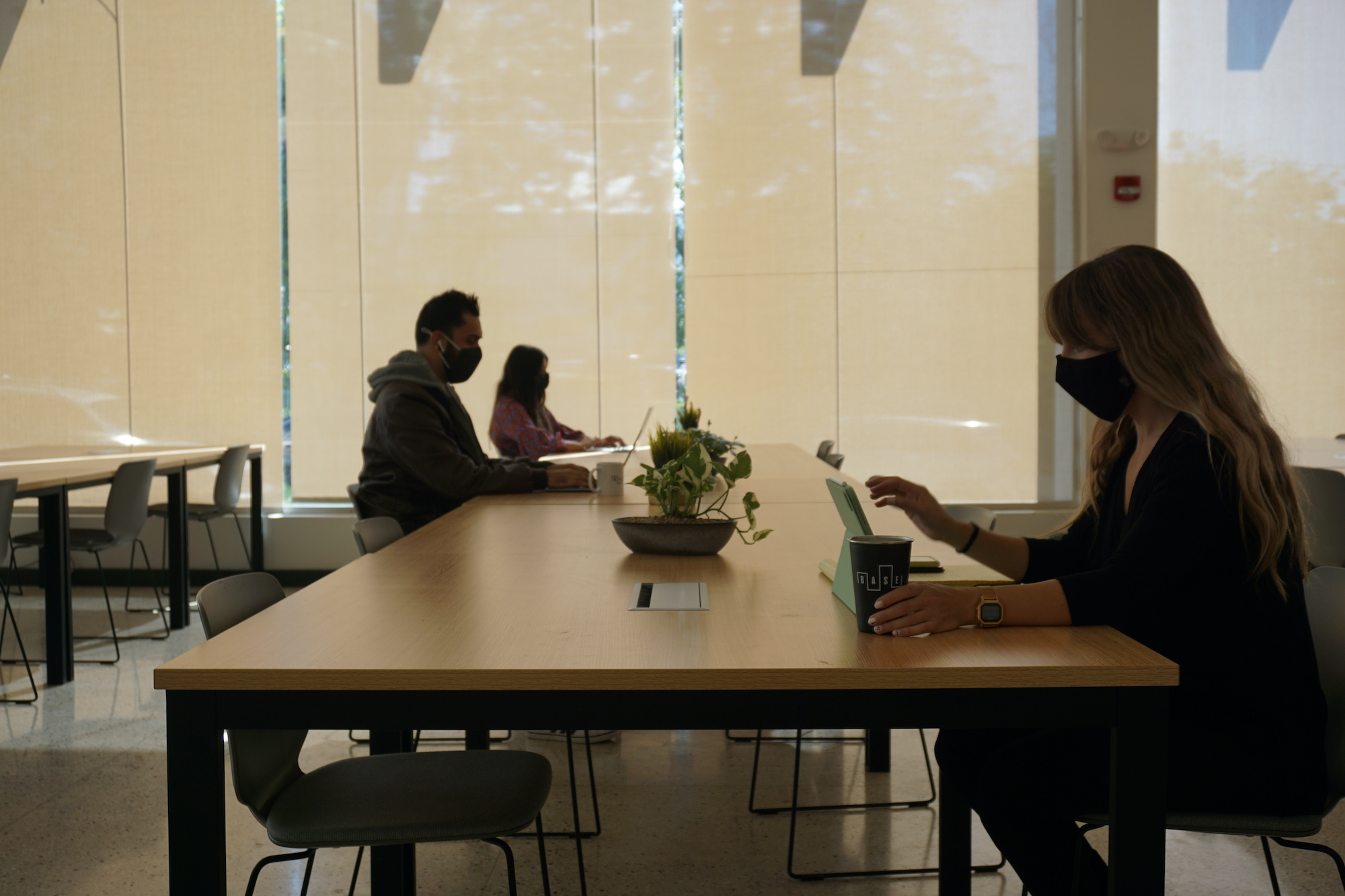 People working with laptops and cups in table at BASE co working space