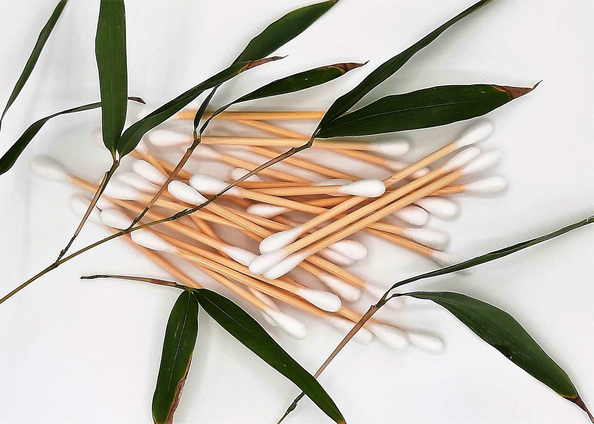 Biodegradable bamboo buds