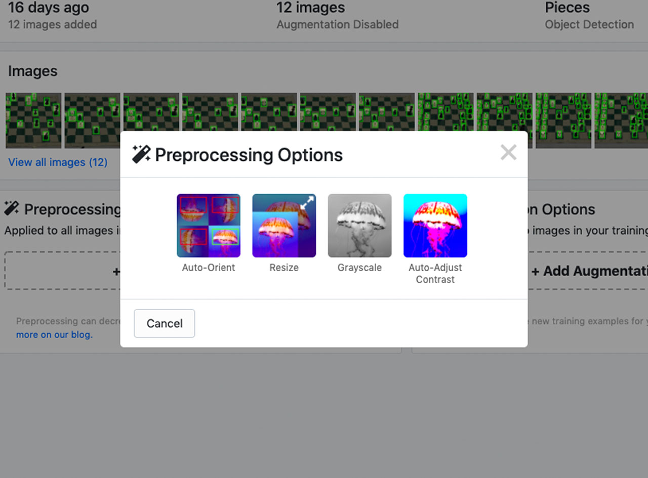 Roboflow Preprocessing Options
