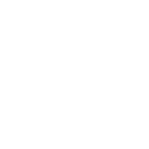 Personal shopping services