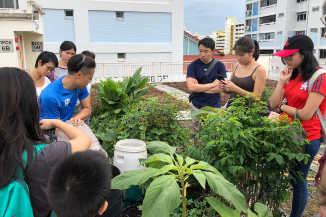 Chun Yeow and participants in Chun Yeow's garden.