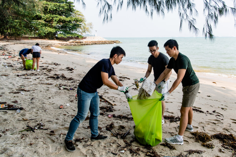 Participants in a coastal cleanup.