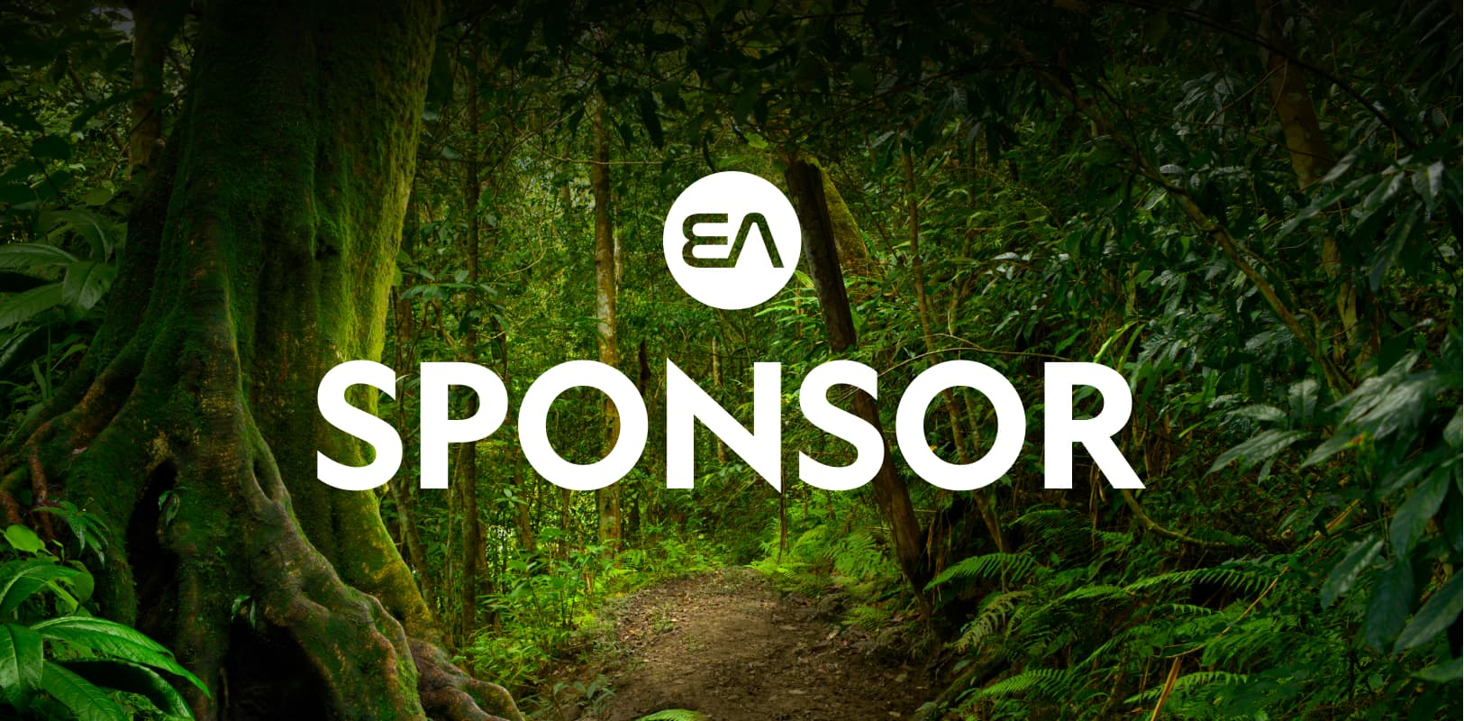 Sponsor - The Earth Archive