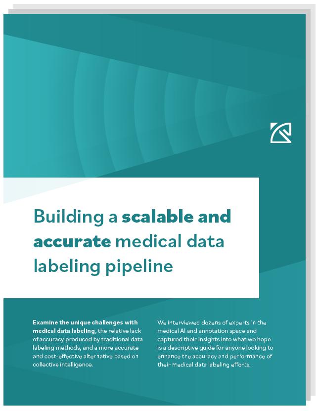 medical data labeling white paper