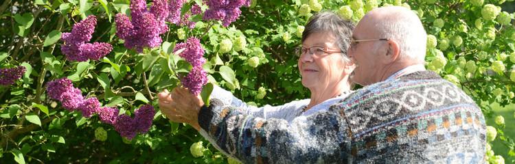 Five Ways Seniors Can Minimize Stress