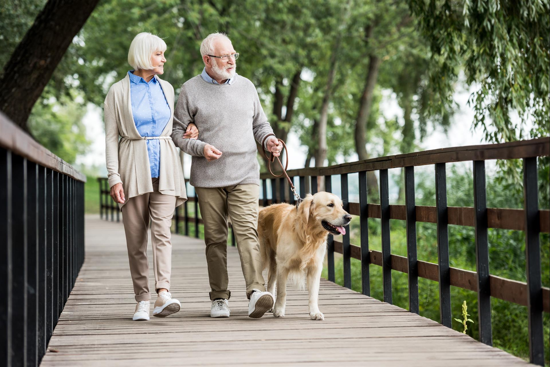 4 Mental and Physical Health Benefits of Taking a Walk