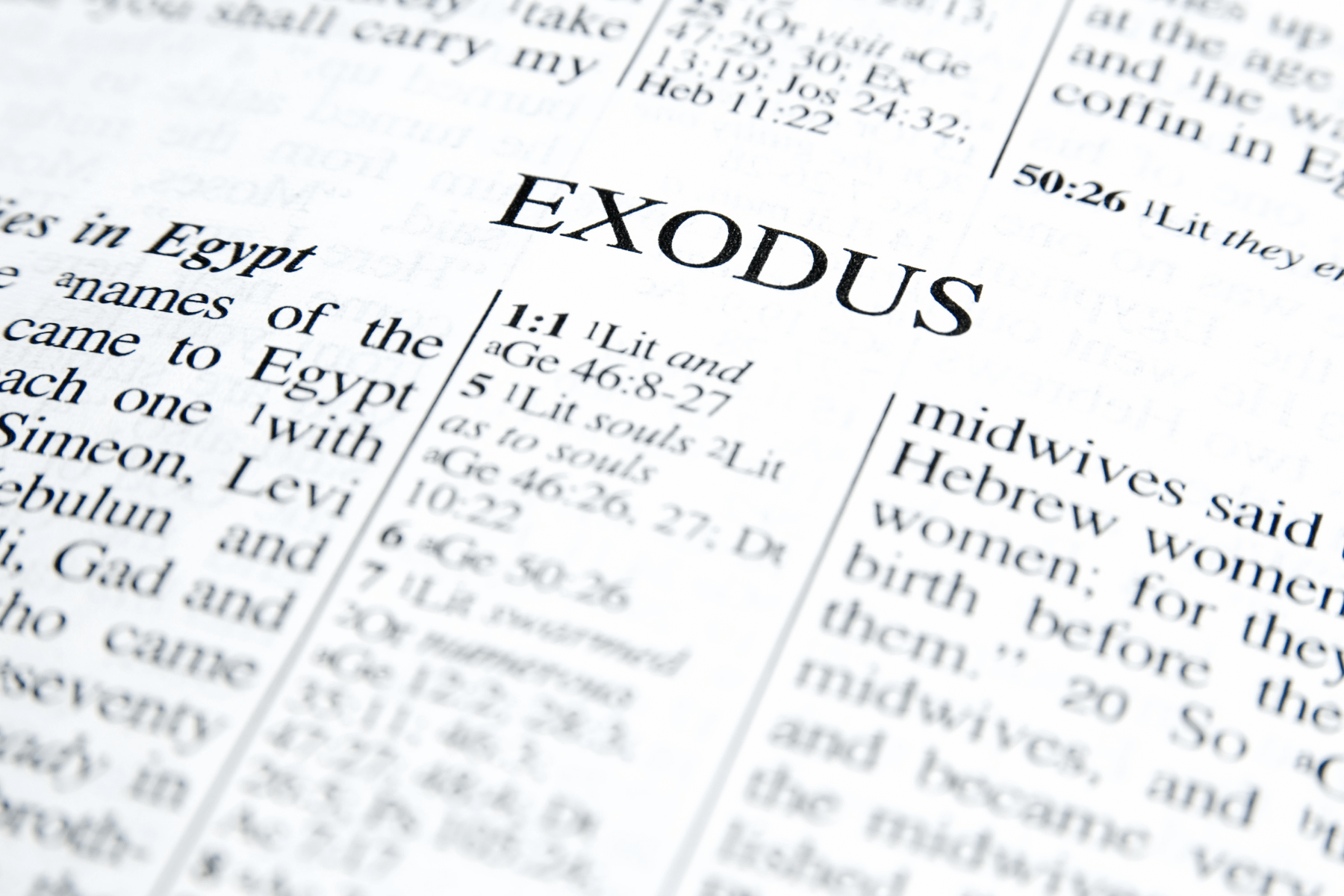 Three Stories From Exodus That Seniors Can Hold To Heart