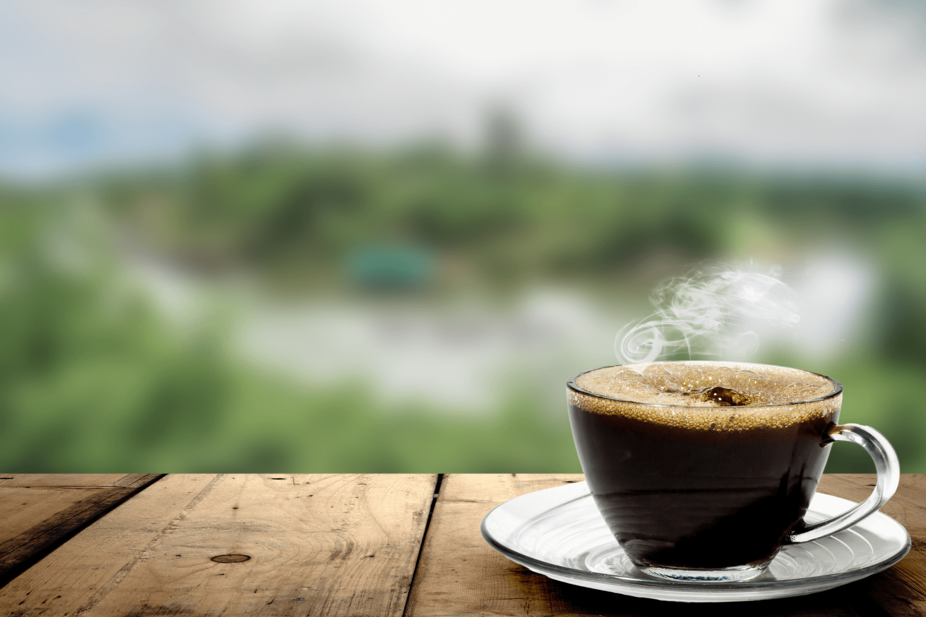 7 Coffee Facts Seniors Should Know