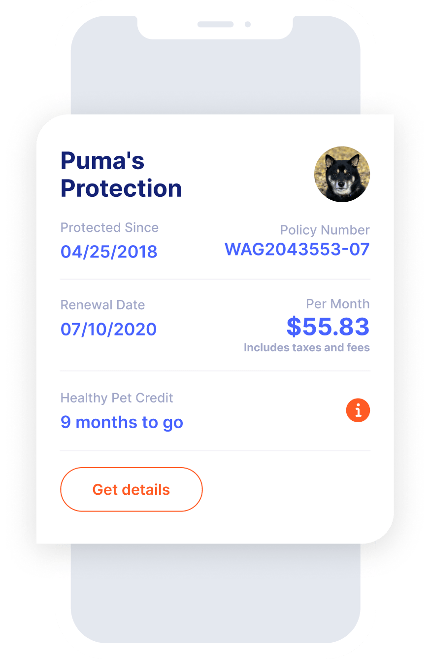 Protection plan example in the app