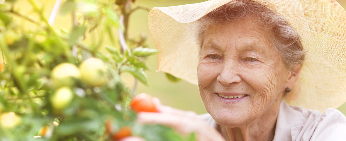 4 Tips for Nurturing a Garden Hobby in Your Assisted Living Apartment