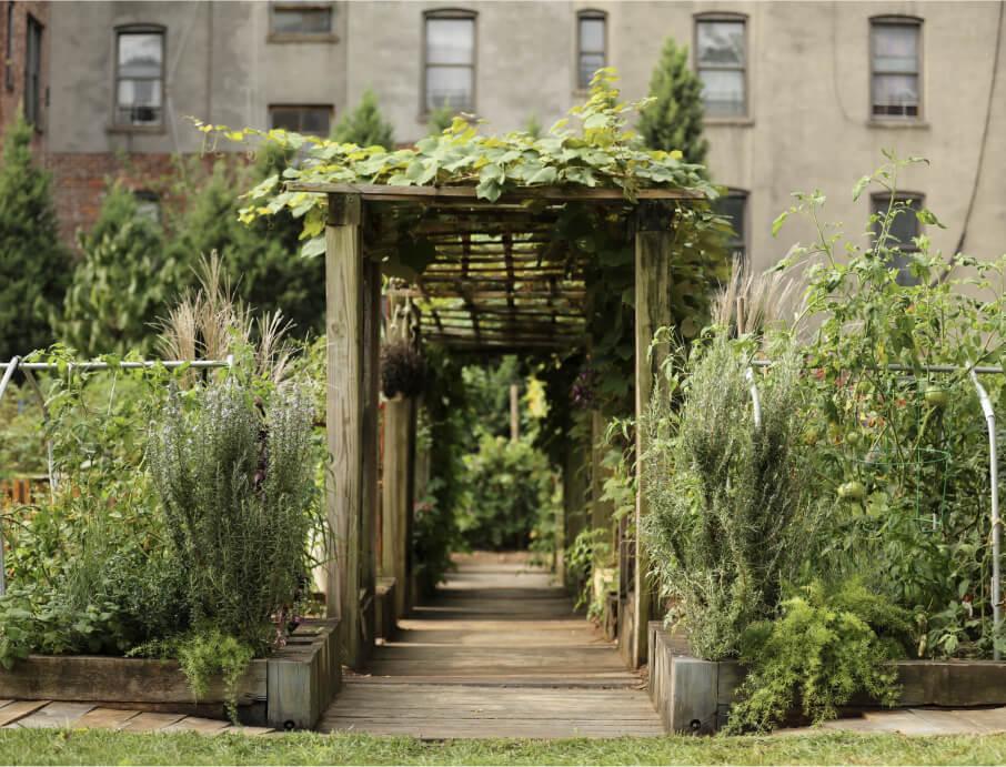 Highbridge Community Garden